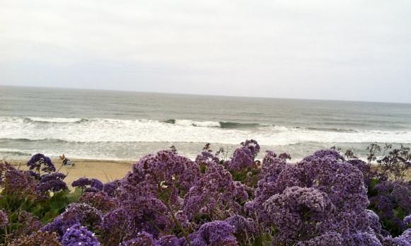 oceanview2